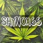 Shynox66